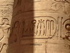 texte de hieroglyphes